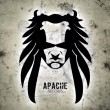 Apache Records