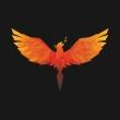 Phoenix Domain