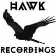Hawk Recordings