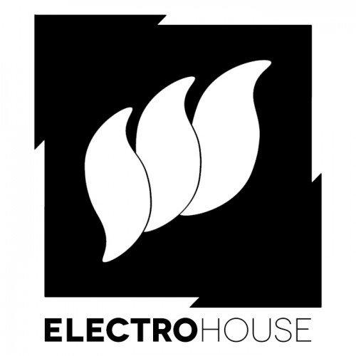 Flashover Electro House logotype