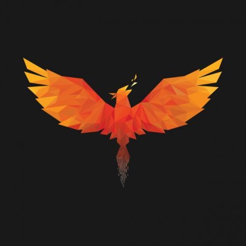 Phoenix Domain logotype