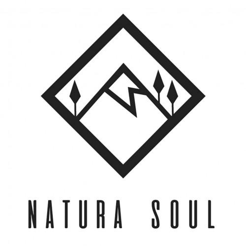 Natura Soul logotype