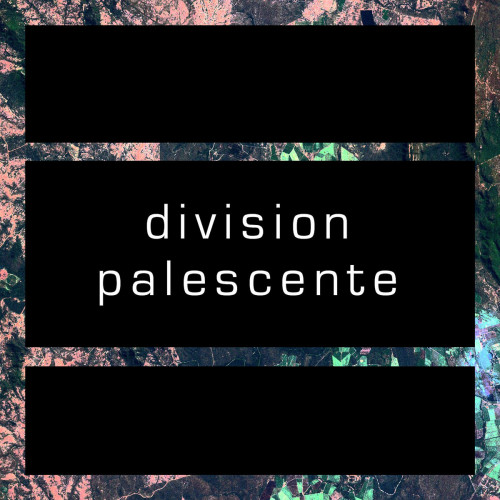 Division Palescente L&S logotype