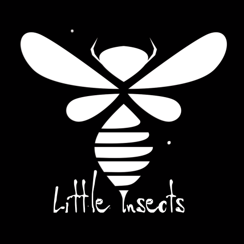 Little Insects logotype