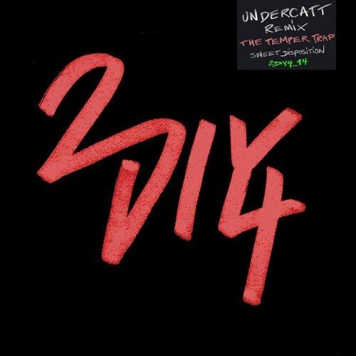 2DIY4 logotype