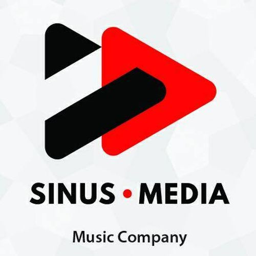 Sinus Media logotype