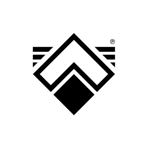 A L P H A - Record's logotype